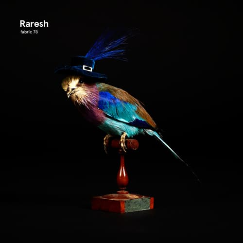 FABRIC78-RARESH