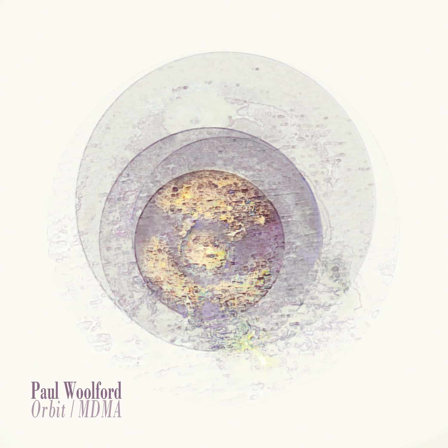 Paul Woolford - Orbit