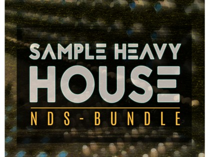 Sample Heavy House // NDS Bundle